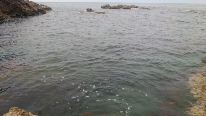 6月24日の海