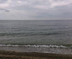 朝の海はまぁまぁ穏やかだった